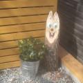 2012-04-01_fruehling-im-garten_101